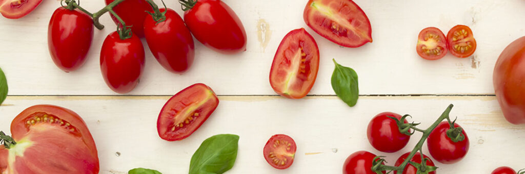 Italian Tomatoes harvest news 2020